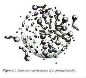 SphericalMicele.jpg